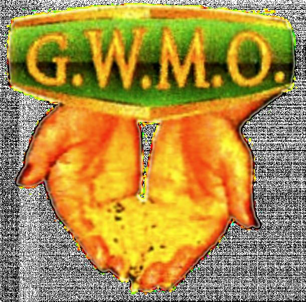 Guyana Women Miners Org